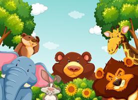 Wilde Tiere im Wald
