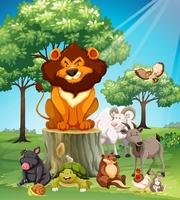 Många djur i safari vektor