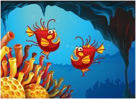 Två fiskar under havet nära korallrev