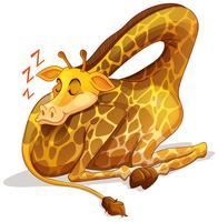 Söt giraff sover ensam vektor