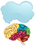 Mänsklig hjärn- och talbubbelsmall vektor