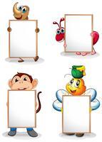 Fyra whiteboards framför de fyra djuren