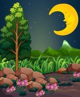Ein schlafender Mond vektor
