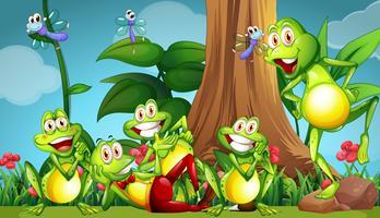 Fem grodor och sländor i trädgården