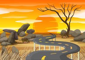 Solnedgång vid savanna fält