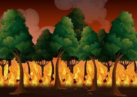 Ein Wald mit einer Waldbrandkatastrophe vektor