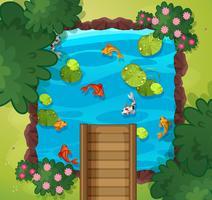 En flygvy över fiskdamm