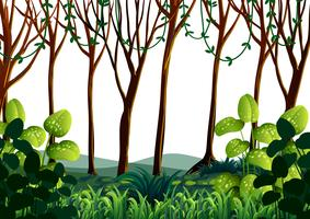 Waldszene mit grünen Bäumen