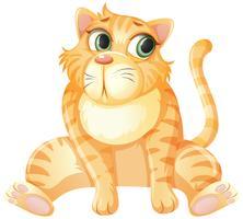 En gul katt sitter på vit bakgrund vektor