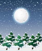Snölandskap på natten