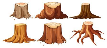 En uppsättning olika stubbar