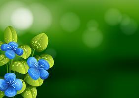 Vacker blå blomma bakgrund vektor