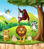 Vilda djur i djungeln vektor