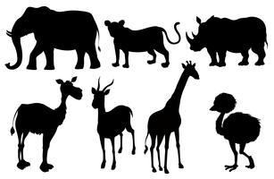 Set exotische Tiere der Silhouette vektor