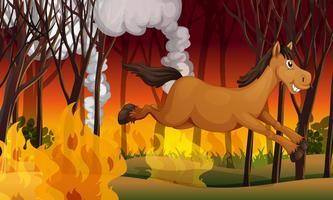 Pferd läuft weg von einem Feuer vektor