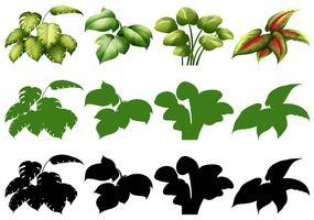 Sats av olika växtdesign
