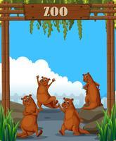 Otters i djurparken vektor