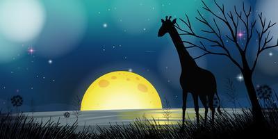 Hintergrundszene mit Schattenbildgiraffe nachts vektor