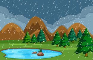 Regnig natt vid dammen natur
