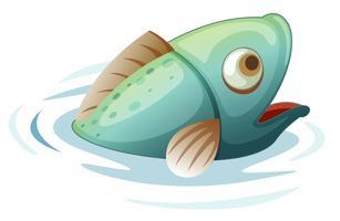 Fisch im Wasser vektor