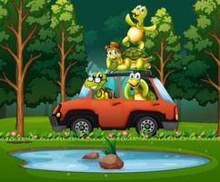 Schildkrötenreise in der Natur vektor