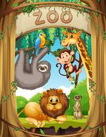 Vilda djur i djurparken vektor