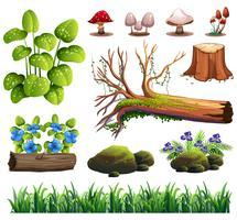 En uppsättning skogselement vektor