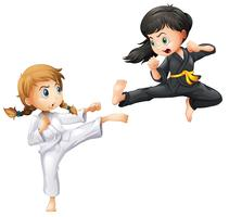 Karate vektor
