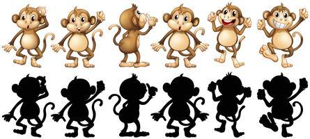 Affen und ihre Silhouette in verschiedenen Pfosten vektor