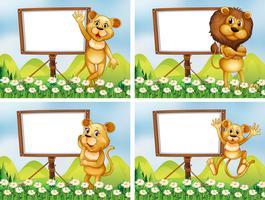 Löwen mit Holzschildern vektor