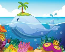 fisk, ö och korall i havet
