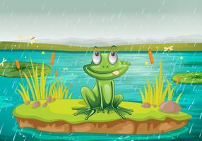 Frosch auf dem Wasser vektor