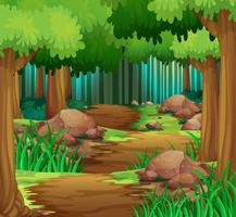 Szene mit Wanderweg im Wald vektor