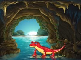 Eidechse, die auf Wasser in der Höhle steht vektor