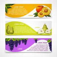 Blandade frukter banners samling vektor