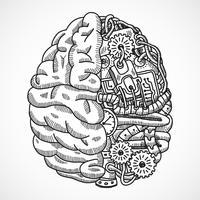 Gehirn als Bearbeitungsmaschine vektor