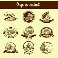 Grönsaker skiss banner set
