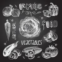 Grönsaker skissa uppsättning tavlan vektor