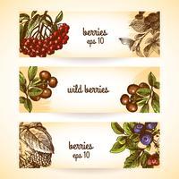 Sketch berries sömlöst mönster vektor