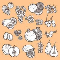 Frukt och bär skissar ikoner