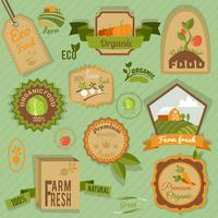 Öko-Etiketten Gemüse vektor