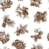 Sketch berries sömlöst mönster