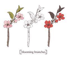 Blühender Baum Sammlung einstellen. Hand gezeichnete botanische Blütenniederlassungen auf weißem Hintergrund. Vektor-illustration