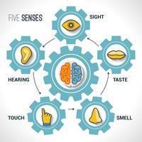 Fem sinnen koncept vektor