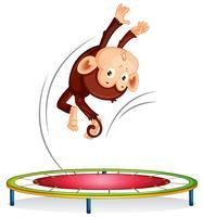 En apa hoppar på trampolin