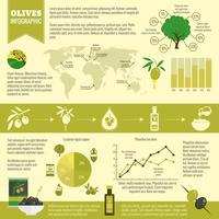 Oliven-Infografiken gesetzt