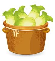 Ein Korb mit Salat