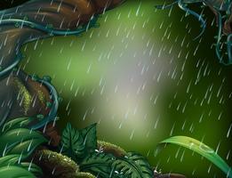 Regnande scen i den djupa skogen