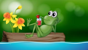 Trinkender Saft des netten Frosches auf dem Klotz