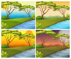 Fyra scener av floden i skogen